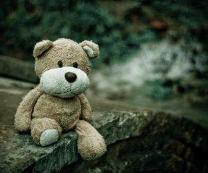 20161027_teddy