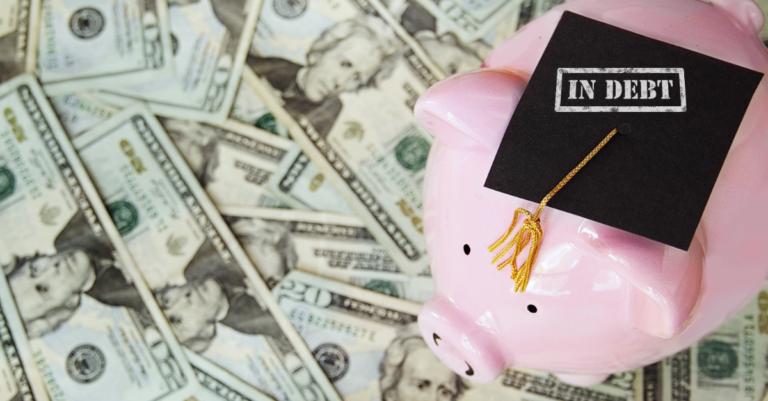 student loan steps for veterinary graduates